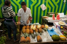 05-ipanema-pineapple-stand