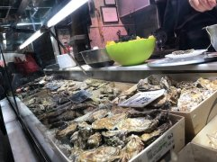 oyster-selection