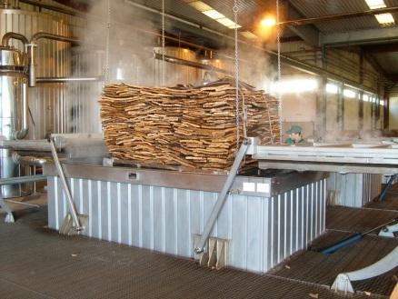 Portugal-Cork-being-steam-sterlised